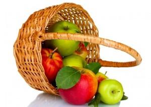 makanan musim kemarau