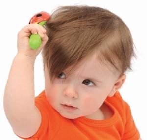 rambut bayi