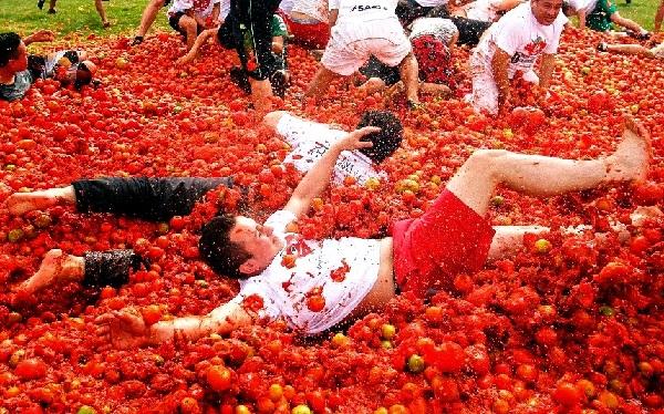 la tomatina, tempat wisata di banyuwangi, wisata banyuwangi, wisata di banyuwangi, tempat wisata banyuwangi, banyuwangi
