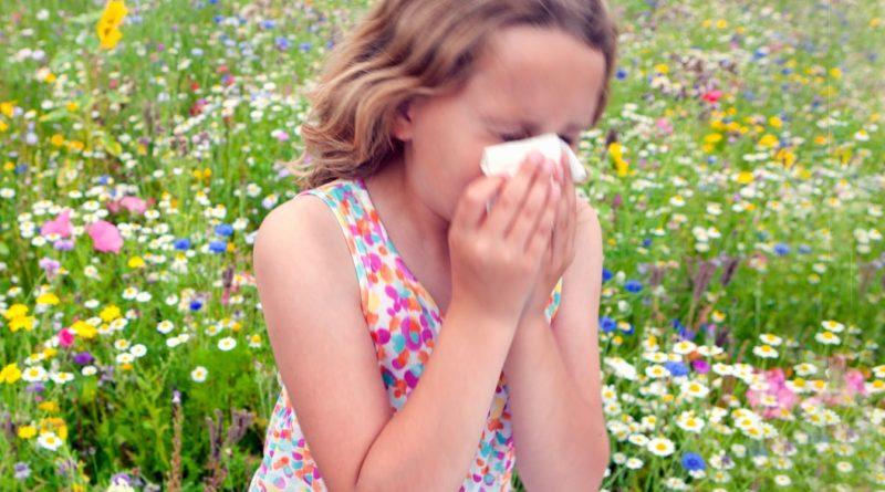 anak alergi bunga, anak alergi dingin, anak alergi obat, anal alergi cuaca